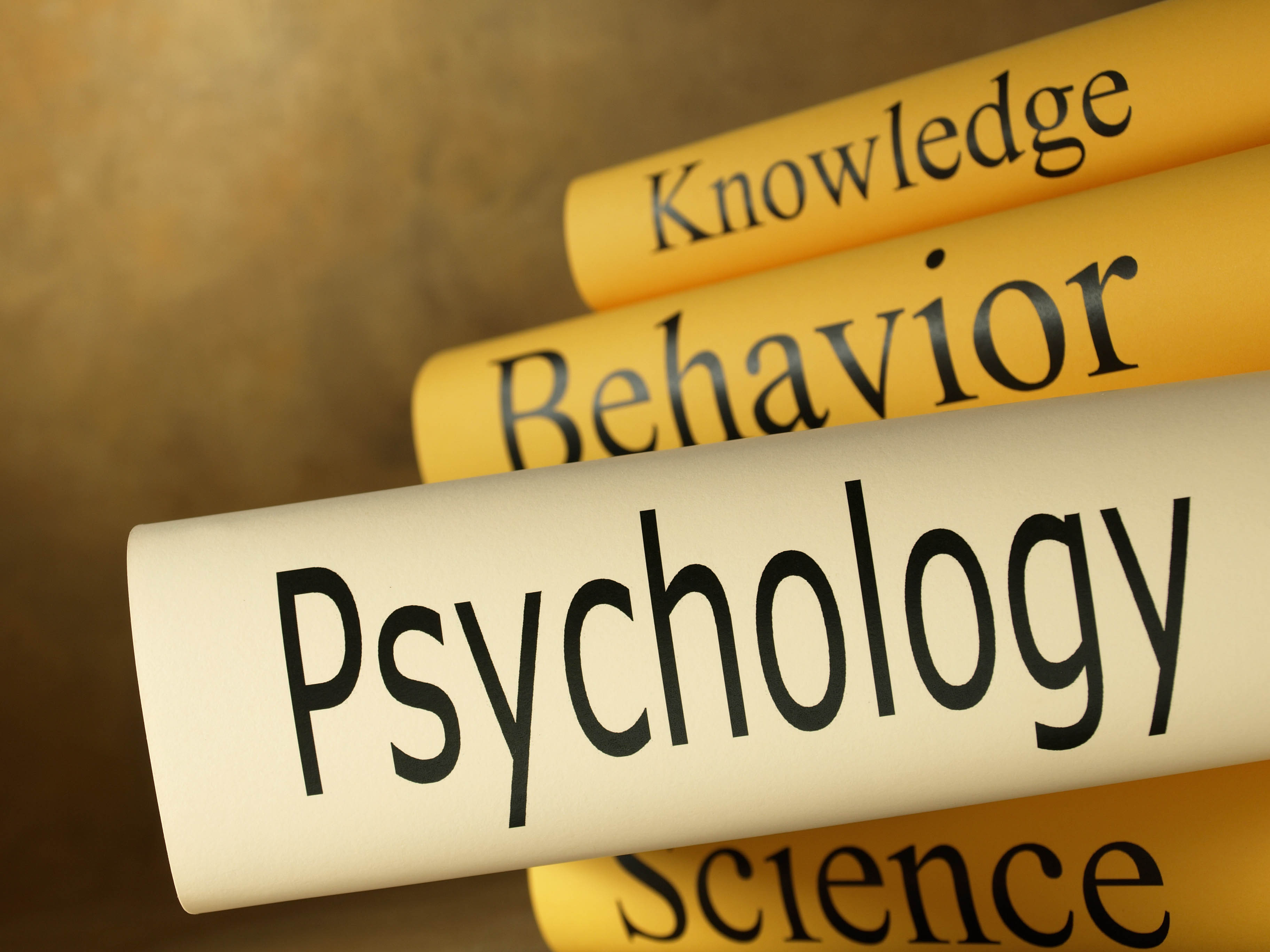 Popular Psychology Books In The Year 2014